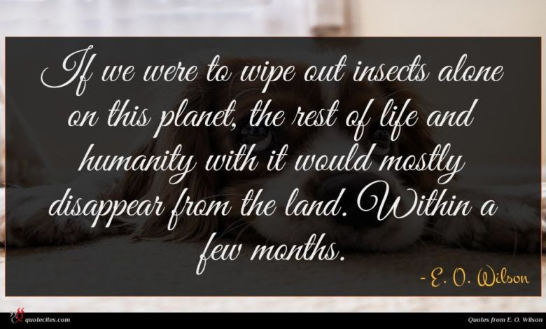 If we were to wipe out insects alone on this planet, the rest of life and humanity with it would mostly disappear from the land. Within a few months.