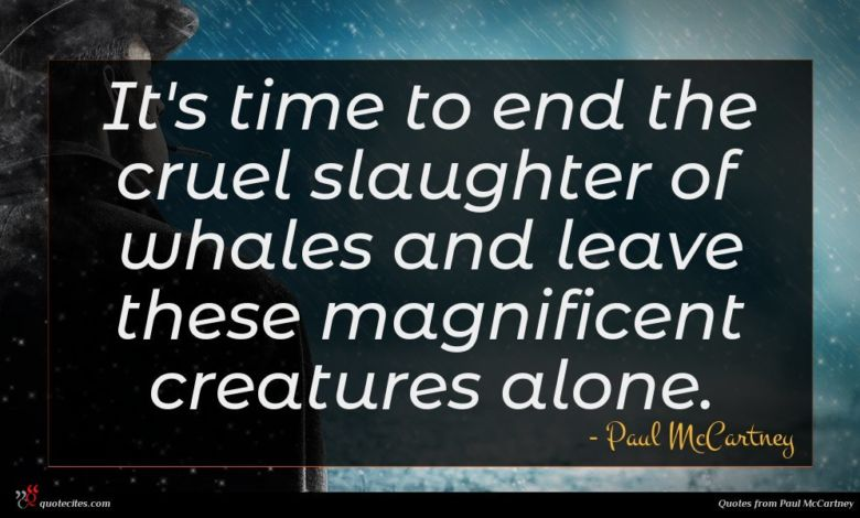 It's time to end the cruel slaughter of whales and leave these magnificent creatures alone.