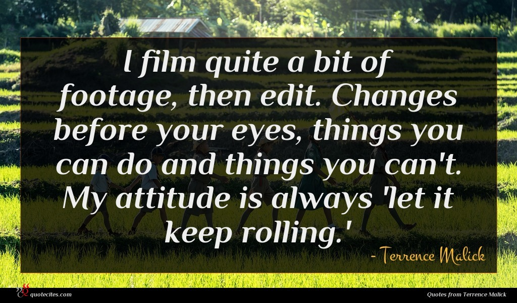 Photo of Terrence Malick quote : I film quite a …