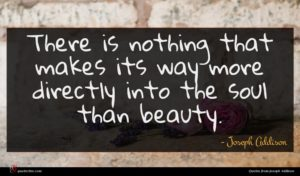 Joseph Addison quote : There is nothing that ...