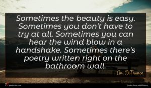 Ani DiFranco quote : Sometimes the beauty is ...