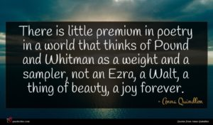 Anna Quindlen quote : There is little premium ...