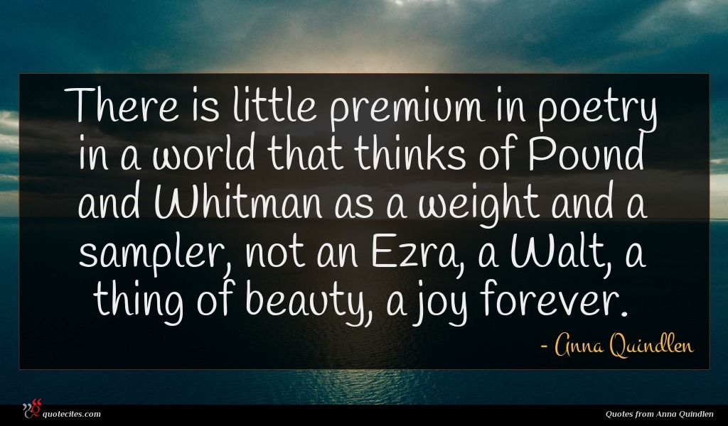 Photo of Anna Quindlen quote : There is little premium …