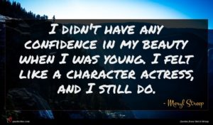 Meryl Streep quote : I didn't have any ...