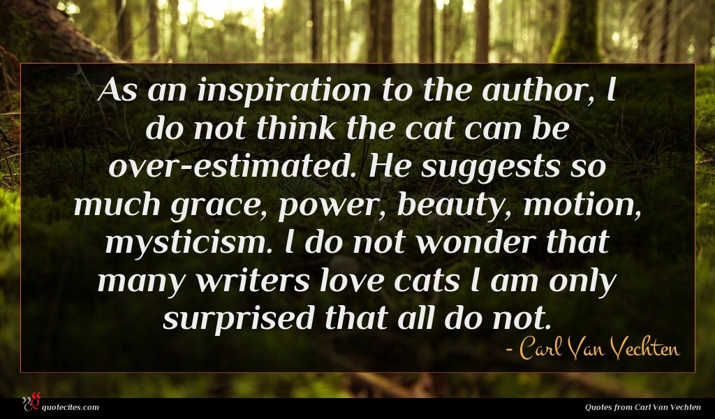Photo of Carl Van Vechten quote : As an inspiration to …