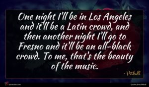 Pitbull quote : One night I'll be ...