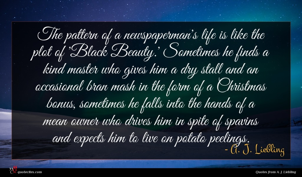 The pattern of a newspaperman's life is like the plot of 'Black Beauty.' Sometimes he finds a kind master who gives him a dry stall and an occasional bran mash in the form of a Christmas bonus, sometimes he falls into the hands of a mean owner who drives him in spite of spavins and expects him to live on potato peelings.