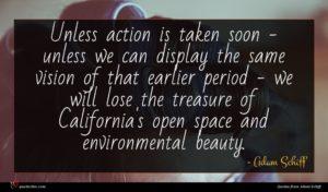 Adam Schiff quote : Unless action is taken ...