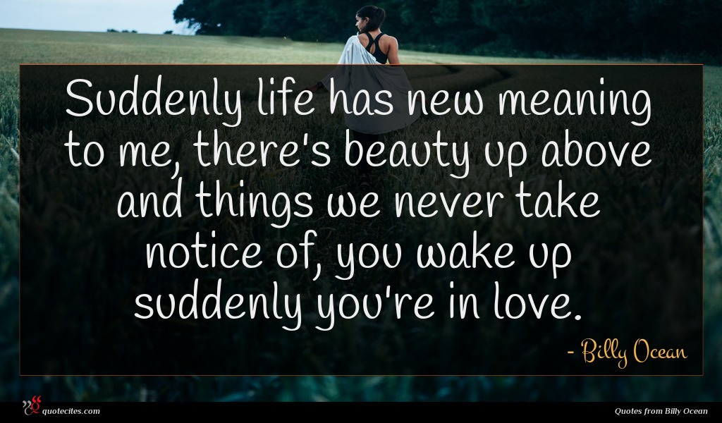 Suddenly life has new meaning to me, there's beauty up above and things we never take notice of, you wake up suddenly you're in love.