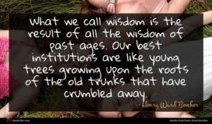 Henry Ward Beecher quote : What we call wisdom ...