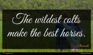Plutarch quote : The wildest colts make ...