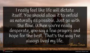 Shania Twain quote : I really feel like ...