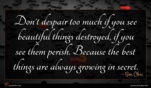 Ben Okri quote : Don't despair too much ...