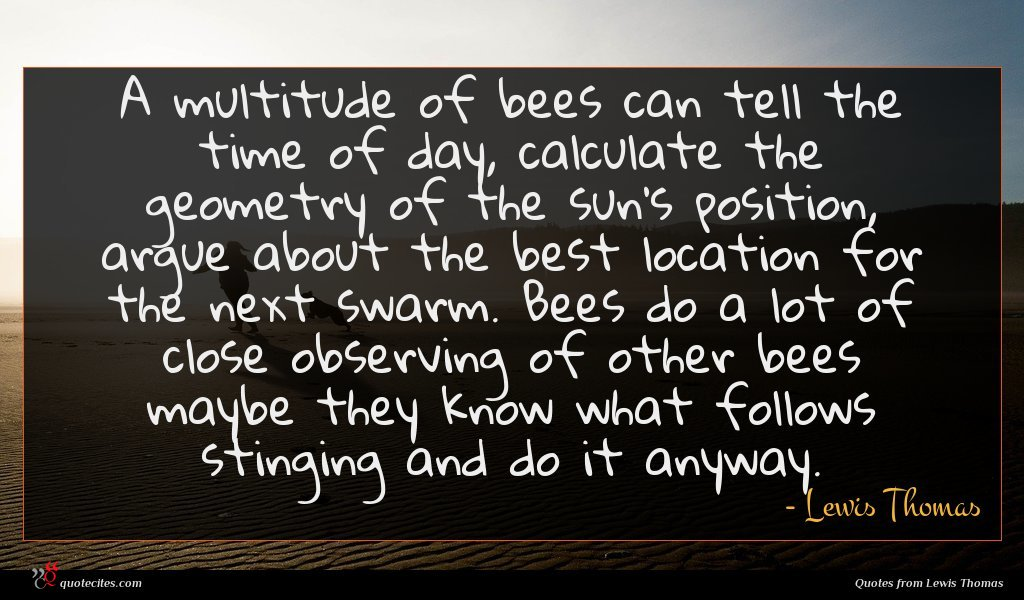 A multitude of bees can tell the time of day, calculate the geometry of the sun's position, argue about the best location for the next swarm. Bees do a lot of close observing of other bees maybe they know what follows stinging and do it anyway.