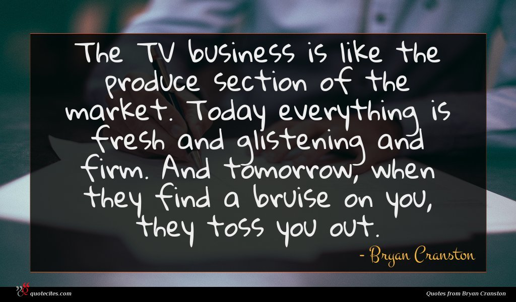Photo of Bryan Cranston quote : The TV business is …
