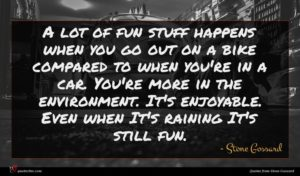 Stone Gossard quote : A lot of fun ...