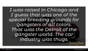 Quincy Jones quote : I was raised in ...
