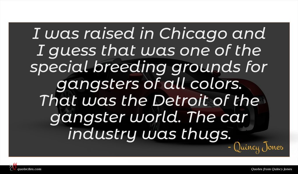 I was raised in Chicago and I guess that was one of the special breeding grounds for gangsters of all colors. That was the Detroit of the gangster world. The car industry was thugs.