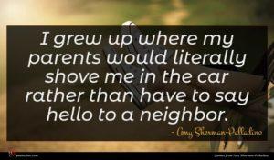 Amy Sherman-Palladino quote : I grew up where ...