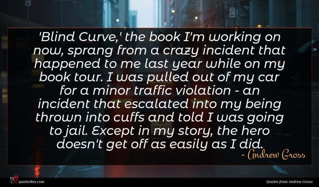 'Blind Curve,' the book I'm working on now, sprang from a crazy incident that happened to me last year while on my book tour. I was pulled out of my car for a minor traffic violation - an incident that escalated into my being thrown into cuffs and told I was going to jail. Except in my story, the hero doesn't get off as easily as I did.