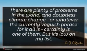 P. J. O'Rourke quote : There are plenty of ...