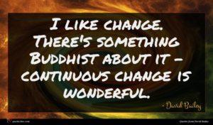 David Bailey quote : I like change There's ...