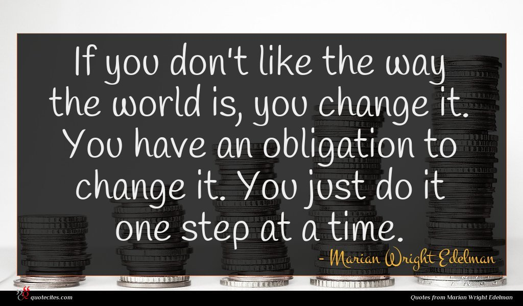 If you don't like the way the world is, you change it. You have an obligation to change it. You just do it one step at a time.