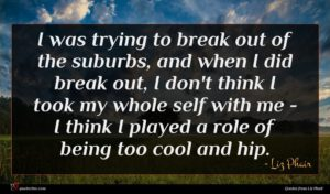Liz Phair quote : I was trying to ...