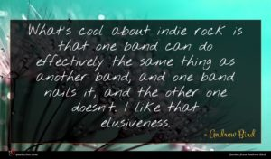 Andrew Bird quote : What's cool about indie ...