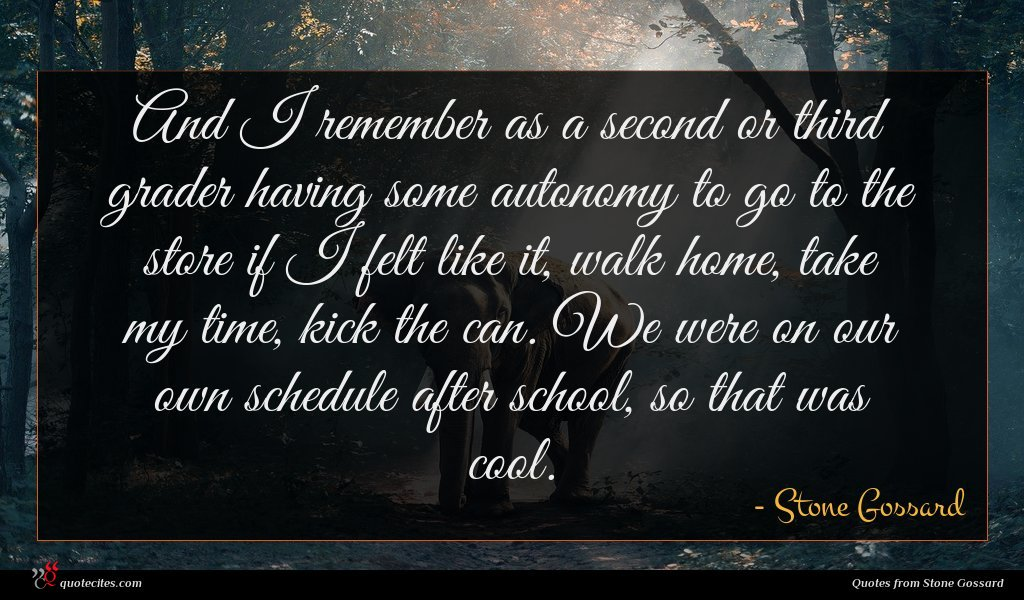 Photo of Stone Gossard quote : And I remember as …