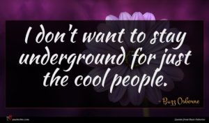 Buzz Osborne quote : I don't want to ...