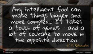 E. F. Schumacher quote : Any intelligent fool can ...