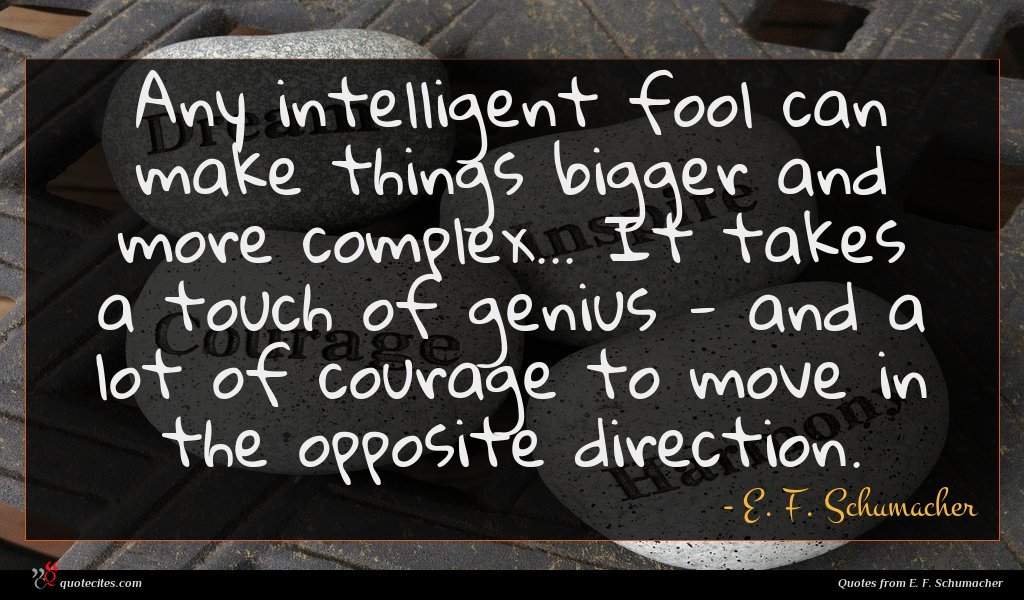 Photo of E. F. Schumacher quote : Any intelligent fool can …