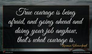 Norman Schwarzkopf quote : True courage is being ...