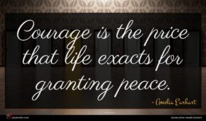 Amelia Earhart quote : Courage is the price ...