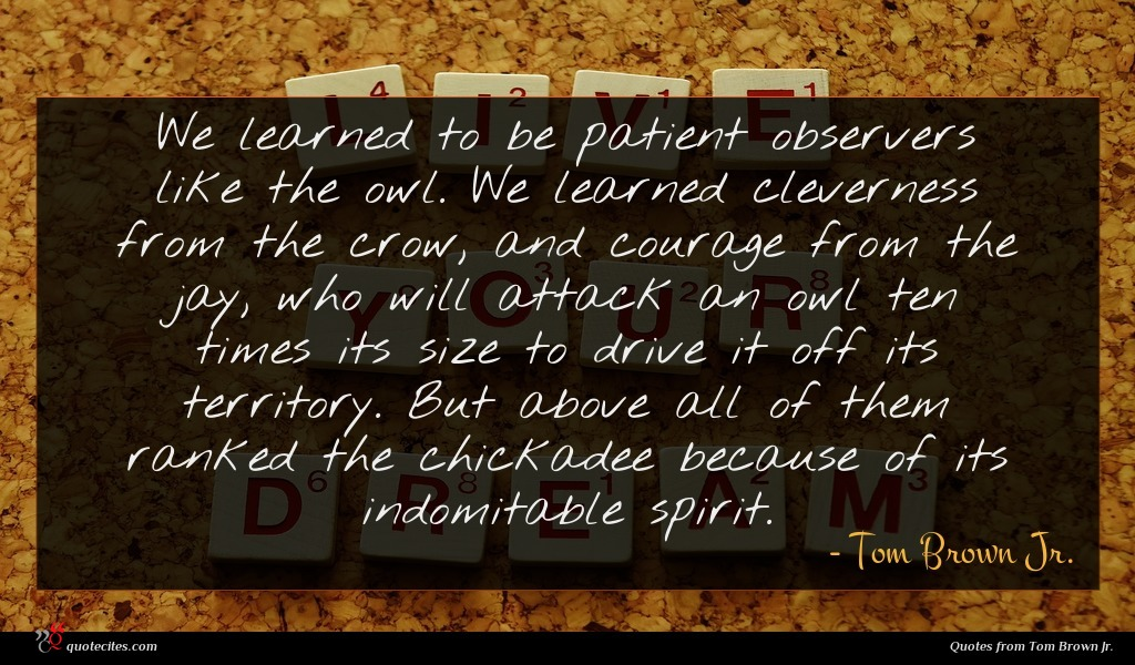 Photo of Tom Brown Jr. quote : We learned to be …