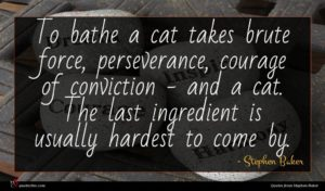 Stephen Baker quote : To bathe a cat ...