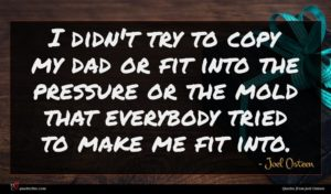 Joel Osteen quote : I didn't try to ...