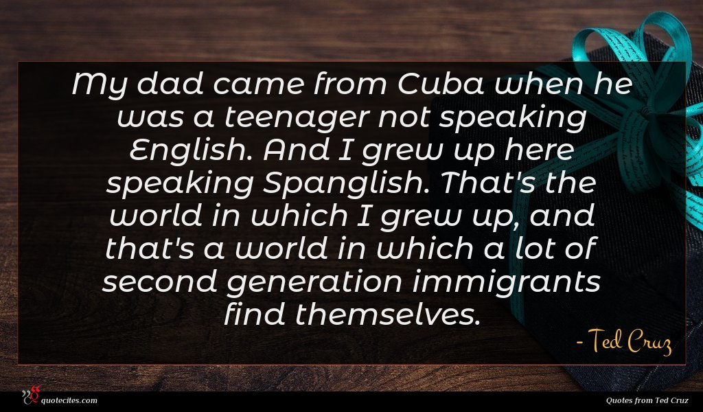 My dad came from Cuba when he was a teenager not speaking English. And I grew up here speaking Spanglish. That's the world in which I grew up, and that's a world in which a lot of second generation immigrants find themselves.