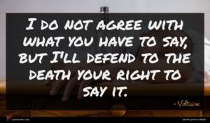 Voltaire quote : I do not agree ...