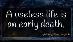 Johann Wolfgang von Goethe quote : A useless life is ...