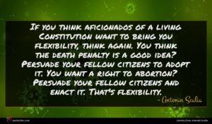 Antonin Scalia quote : If you think aficionados ...