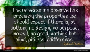 Richard Dawkins quote : The universe we observe ...