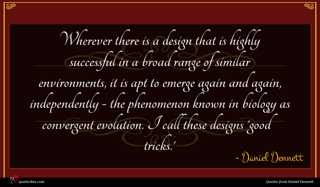 Wherever there is a design that is highly successful in a broad range of similar environments, it is apt to emerge again and again, independently - the phenomenon known in biology as convergent evolution. I call these designs 'good tricks.'
