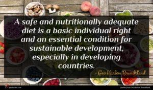 Gro Harlem Brundtland quote : A safe and nutritionally ...