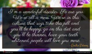 Emilio Estevez quote : I'm a wonderful disaster ...