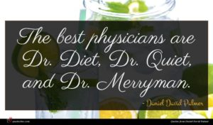 Daniel David Palmer quote : The best physicians are ...