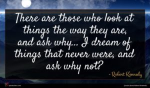 Robert Kennedy quote : There are those who ...