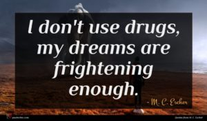 M. C. Escher quote : I don't use drugs ...