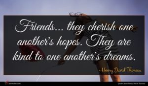 Henry David Thoreau quote : Friends they cherish one ...
